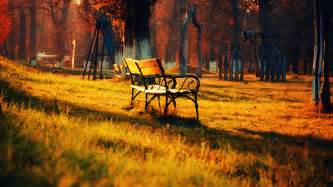 Farm Table Sf Bench Autumn Grass Leaves Park Wallpapers