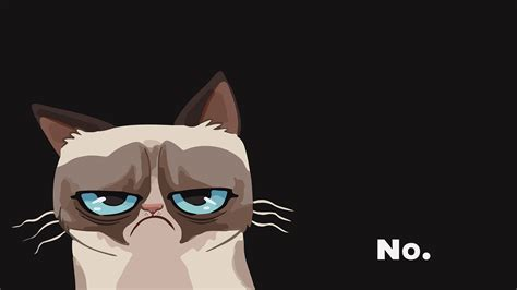 iphone wallpaper grumpy cat grumpy wallpapers wallpaper cave