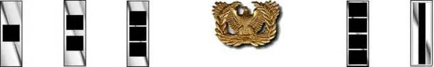 mission statement ta bay chapter of warrant officers