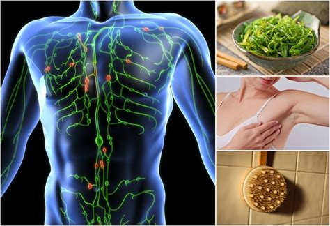 Detox Lymphatic System Naturally by 15 Ways To Boost Your Lymphatic System For Detoxification