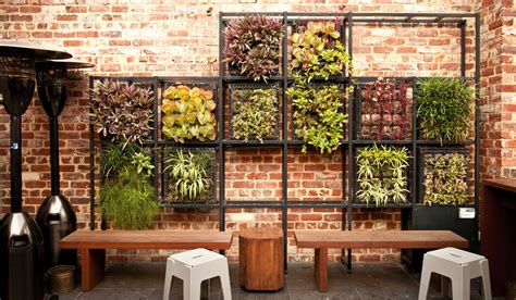 Perth Rooftop Bar Boom With Vertical Garden Design Wall Gardens Melbourne