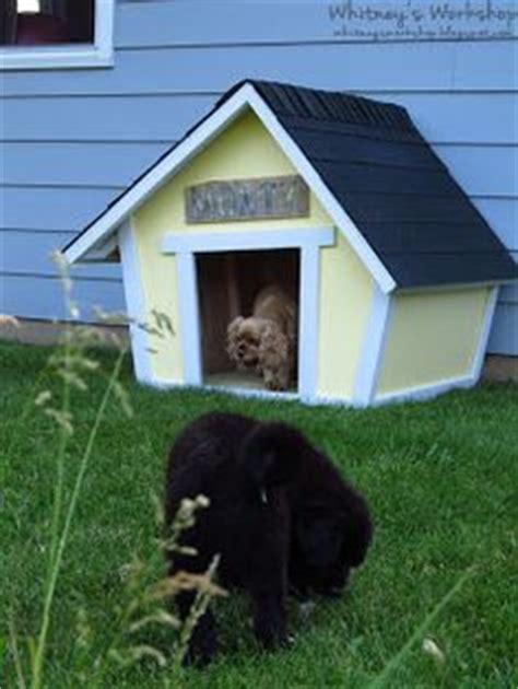 crooked dog house 1000 images about dog houses on pinterest dog houses dog house