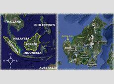 Orangutan Odysseys - Sarawak, Malaysia Kutai