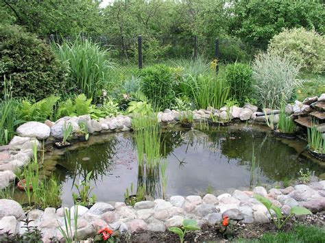 Backyard Pond Images by File Garden Pond 2 Jpg