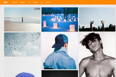 theme tumblr olly 25 best portfolio themes for tumblr premium and free themes