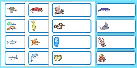 Editable Drawer Peg Name Labels Sea Creatures Under The Edible Label Template