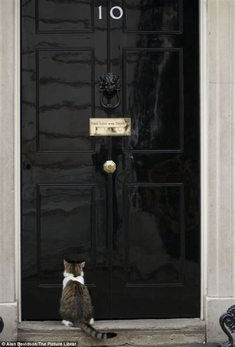 10 downing front door chief mouser to the cabinet office