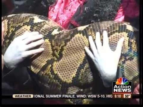 ular piton raksasa terbesar  dunia youtube