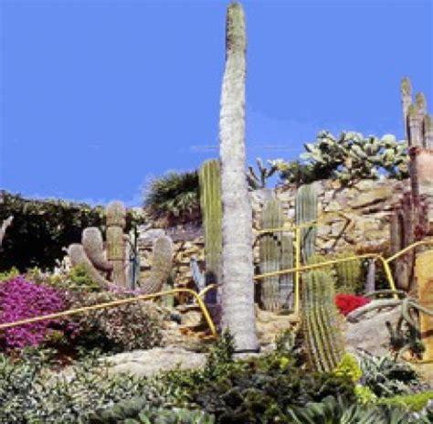 giardino pallanca il parco pi 249 bello
