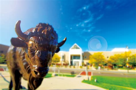 Ub Search Seven Things You Should About The At Buffalo At Buffalo