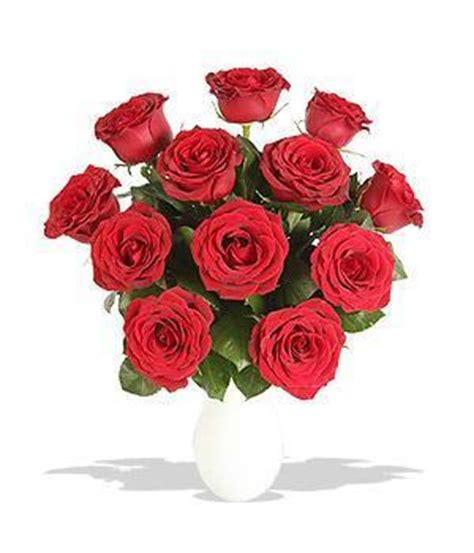 mazzo di fiori virtuale como enviar flores virtuais gr 225 tis 4 passos umcomo