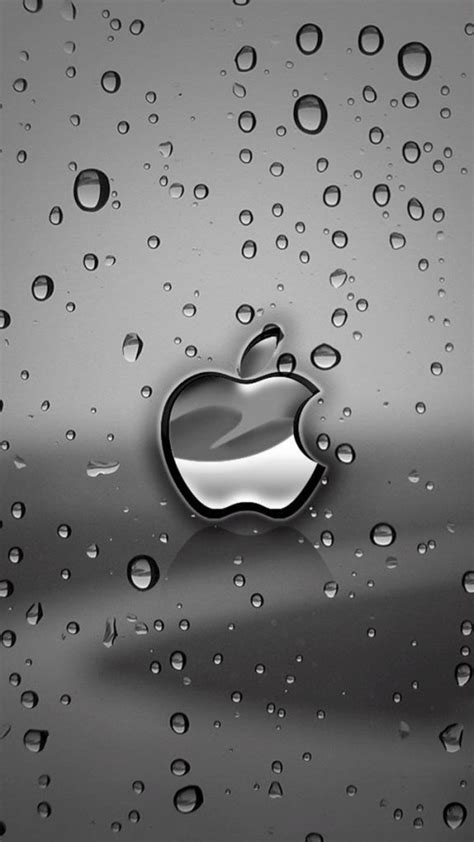 wallpaper for iphone 5 silver silver apple logo with water drops background wallpaper