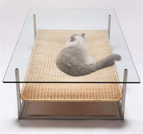 cat table if you have a cat you should also own this table