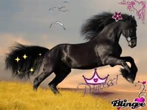 das schönste haus der welt das sch 246 nste pferd der welt picture 125501436 blingee