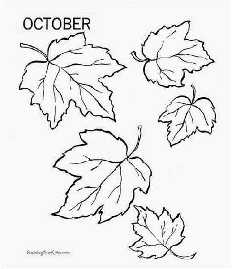 coloring page of a fall tree free printable fall coloring pages
