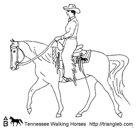 coloring pages of tennessee walking horses triangle b coloring tennessee walking horses 1