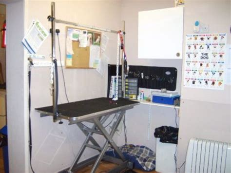 barber equipment glasgow pawcasso cat and dog grooming salon pet grooming company