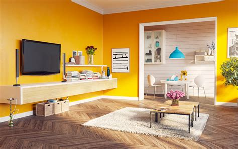 wall paint colour ideas    living room