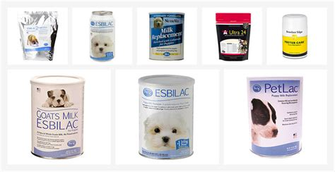 best puppy milk replacer allpettips the best pet care center
