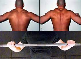 scapula bench press 10 tips to break through a bench press plateau