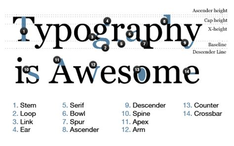 typography anatomy a brief lesson on typography jake przespo