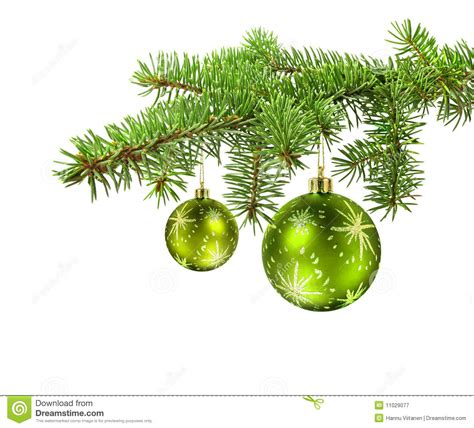green balls on christmas tree branch stock image image