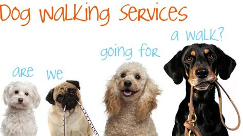 walking services walking services www pixshark images galleries with a bite