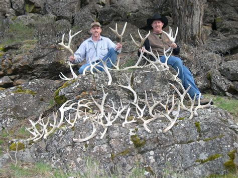 How To Shed Hunt by Shed Hunt Responsibly To Protect Big
