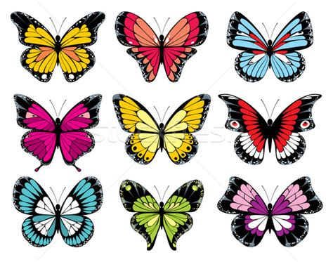 Decorative Butterflies by Set Of 9 Decorative Butterfly Vector Illustration 169 Marina