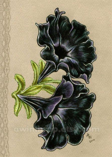 petunia tattoo designs best 25 petunia ideas on new zealand