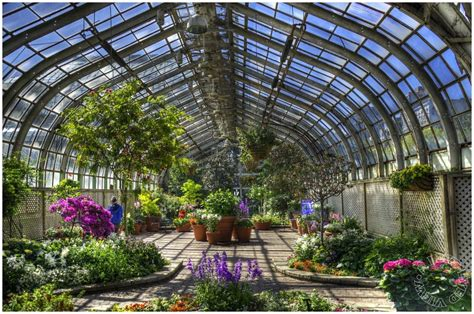 image gallery lincoln park conservatory