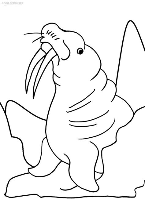 Printable Walrus Coloring Pages For Kids Cool2bkids Walrus Coloring Page