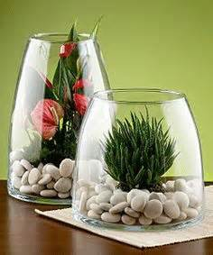 home accessory ideas terrariums on