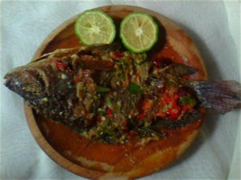 cara membuat bakso ikan nila cara membuat ikan nila bakar bumbu cobek spesial