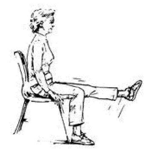 seated leg exercises for geriatrics warm up and exercises