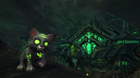 Vanity Items Wow by Obtaining Blizzard Shop And Blizzcon Vanity Items Guides