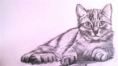 barco de vapor libros 6 años como dibujar un gato realista a lapiz paso a paso