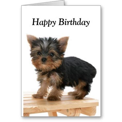 happy birthday yorkie images 29 best images about birthday cards on birthday
