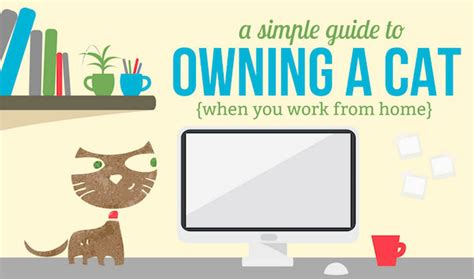 design works home is where the cat is infographic how to work from home with a cat designtaxi