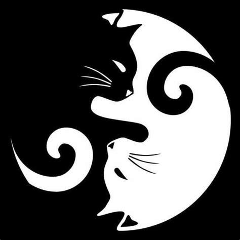 cat yin yang tattoo cat ying yang tattoo ideas pinterest cats love