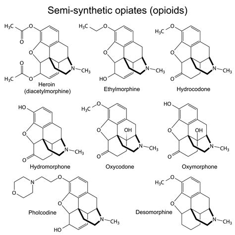 Hydrocodone Sysnthesis by Opioids And Opiates Information Resource Guide List