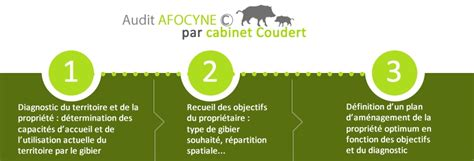 Cabinet Coudert by Expertise Cyn 233 G 233 Tique Audit Afocyne