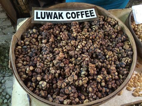 Luwak Coffee baturiti luwak coffee ubud bali travel adventure