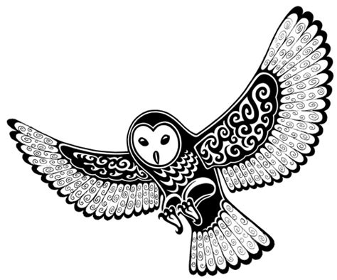 barn owl tattoo designs gallery for gt barn owl drawing tattoos