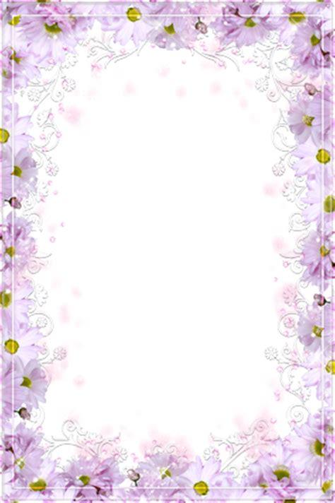 cornici di fiori cornici foto fiori di magenta