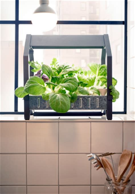 ikea krydda krydda v 196 xer ikea unveils indoor gardening product line