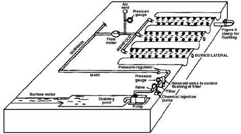 design and layout of drip irrigation system gallery drip irrigation system diagram