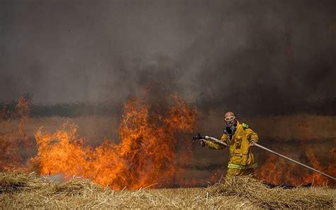 Pemburu Layang Layang 4 layang layang gaza akibatkan kebakaran terburuk bagi cagar