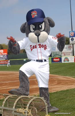 portland sea dogs schedule bates me portland sea dogs and picnic