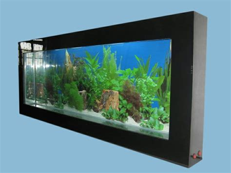 wall mounted aquarium 54 best aquariums and beta fish images on pinterest